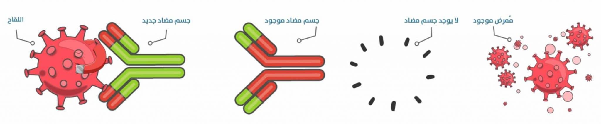كيف يعمل لقاح فيروس كورونا ( مصل كورونا )
